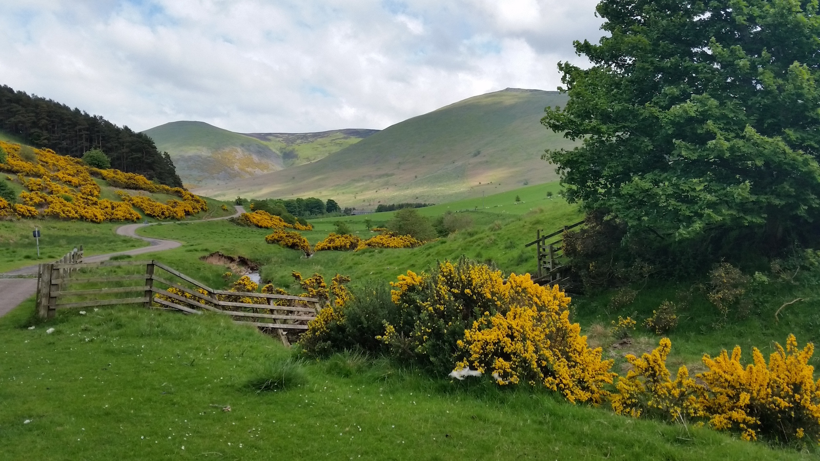scottish-borders-schotland-landweggetje